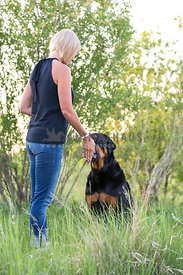Dog Trainer Treating Rottweiler Dog
