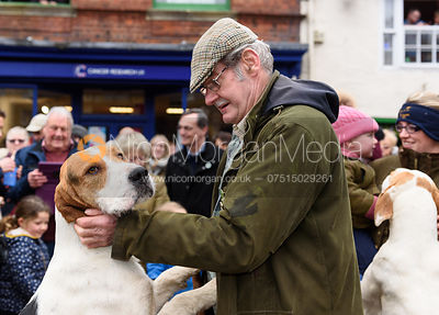 A Cottesmore hound At the meet. The Cottesmore Hunt Boxing Day Meet in Oakham 26/12