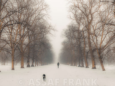 Hyde Park path covered in snow, London, UK