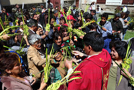Priest blessing ornaments made out of palm leaves on Palm Sunday , La Paz , Bolivia