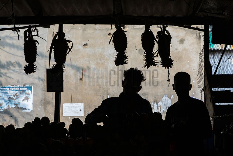 Sillhouette of Fruit Sellers at Jaffna Market