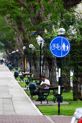 Man reading newspaper next to cycle / pedestrian lane in centre of Avenida Arequipa, Miraflores, Lima, Peru