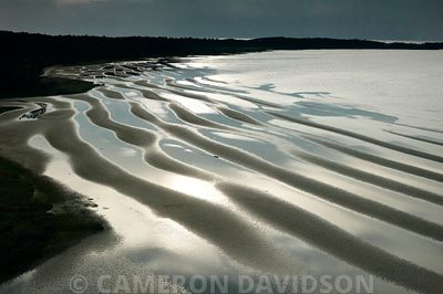 Aerial photogrpah of mud flats on the Chesapeake Bay