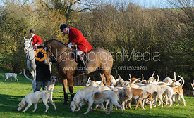Andrew Osborne MFH and hounds at the meet.