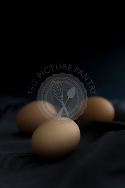 Eggs on a black background