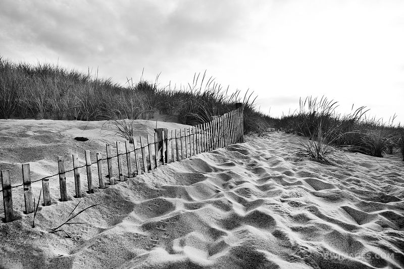 RACE POINT CAPE COD MASSACHUSETTS BLACK AND WHITE