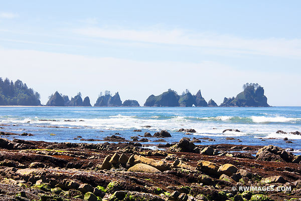 SHI SHI BEACH POINT OF THE ARCHES PACIFIC NORTHWEST OLYMPIC NATIONAL PARK