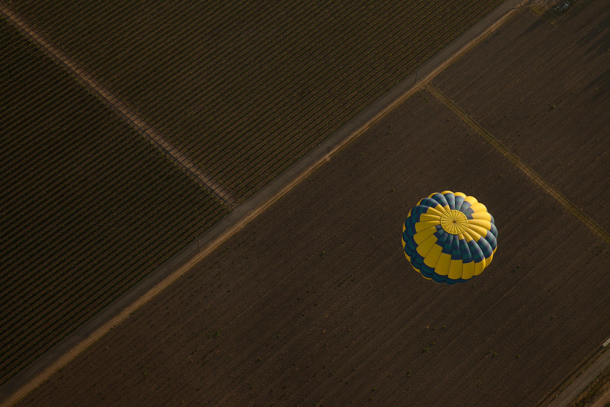 Aerial photo of a hot air balloon floating over a Napa Valley vineyard