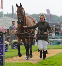 Gemma Tattersall and ARCTIC SOUL - The first vets inspection (trot up),  Land Rover Burghley Horse Trials, 3rd September 2014.