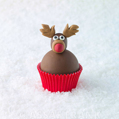 Christmas Reindeer cupcake on snow
