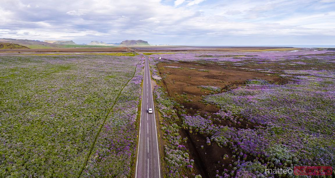 Aerial panoramic view of Ring Road through green plains, Iceland