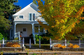 Fall colors on the Street, Nevada City #3