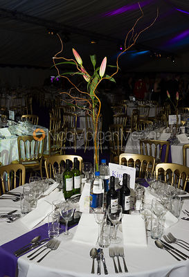 The Quorn Hunt Ball 2013 photos
