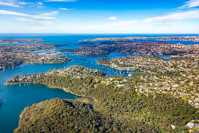 The Sugarloaf to The Heads, Castlecrag