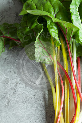 Rainbow Swiss Chard on Grey Stone