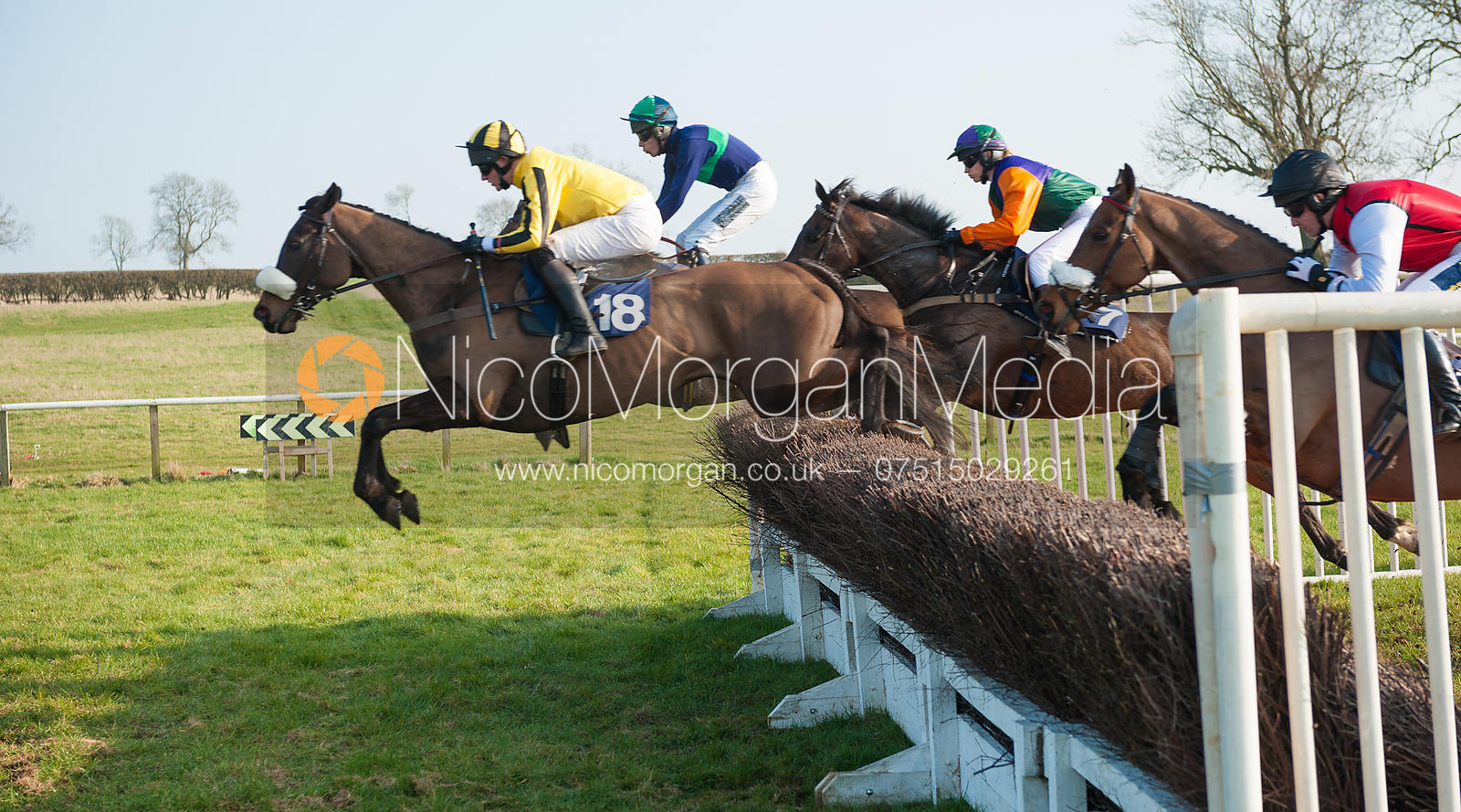 Race 5 - Belvoir Hunt Point to Point 24/3/12