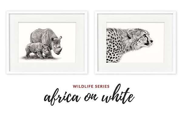 Africa on White Exhibition, Mollymook NSW