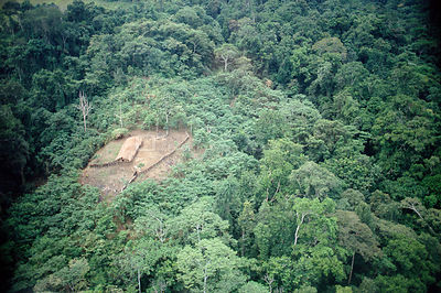 Aerial view of 'Swidden' agriculture, clearing in rainforest. Papua New Guinea 1992