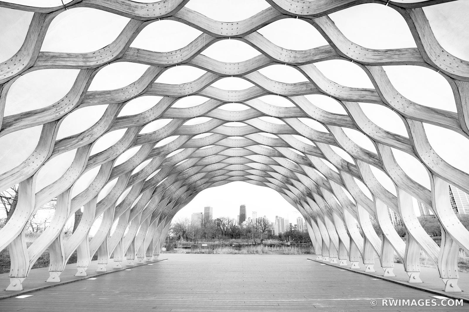 CURVACEOUS WOOD PAVILION HONEYCOMB STRUCTURE SOUTH LINCOLN PARK CHICAGO ILLINOIS BLACK AND WHITE