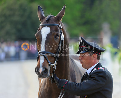Stefano Brecciaroli and APOLLO VD WENDI KURT HOEVE - Mitsubishi Motors Badminton Horse Trials 2013