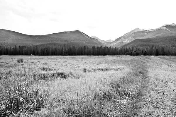 DIRT ROAD IN THE MEADOW KAWUNEECHE VALLEY ROCKY MOUNTAIN NATIONAL PARK COLORADO BLACK AND WHITE