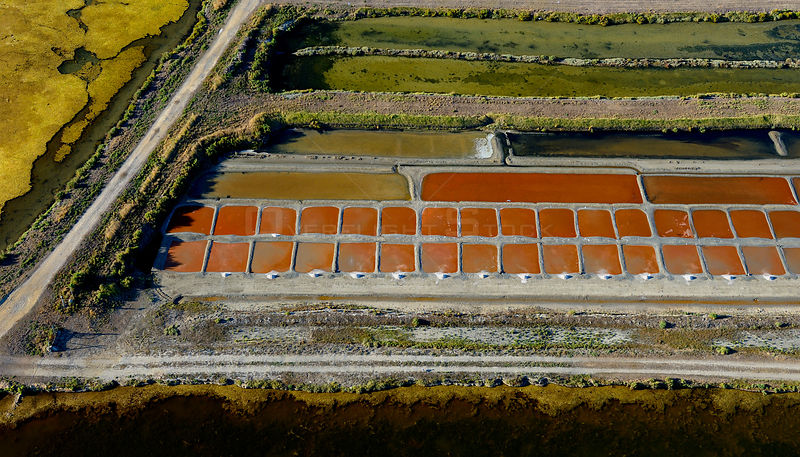 Salt evaporation ponds on Isle de Re, Charente-Maritime, France, Atlantic Coast. July 2017. The colours are produced by the c...