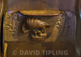 A Pelican in her piety decorating a Misericord in Lavenham Church Suffolk..In medieval Europe Pelicans were often depicted gi...
