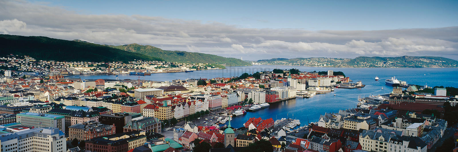 Elevated View of the Bergen Skyline