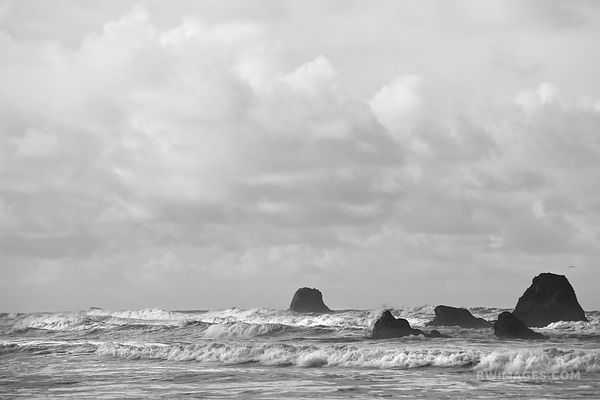 RUBY BEACH PACIFIC OCEAN SEASTACKS OLYMPIC NATIONAL PARK WASHINGTON BLACK AND WHITE