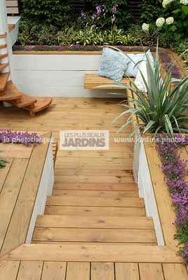 Aromatic plant, Border, garden designer, Perennial, Resting area, Stair, Terrace, Thyme, Contemporary Terrace, Wooden Terrace, Digital, Silver spear