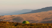 Green tent on Higger Tor