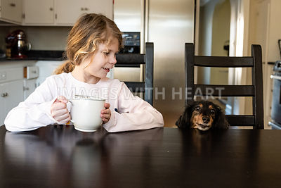 Dachshund and Girl at Kitchen Table 3