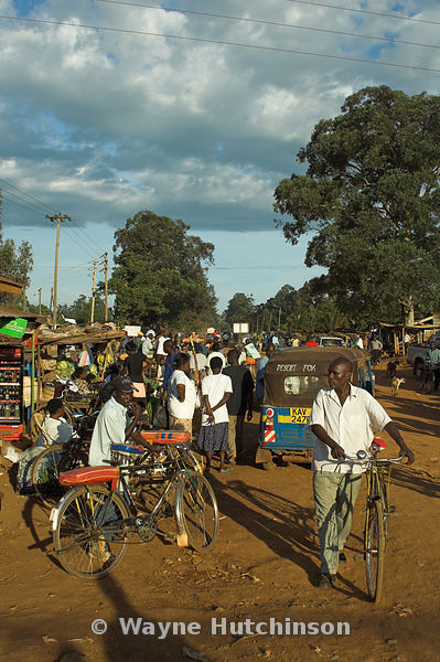 Man pushing bicycle along dusty road with market stalls and cars , Mumias , Kenya Africa