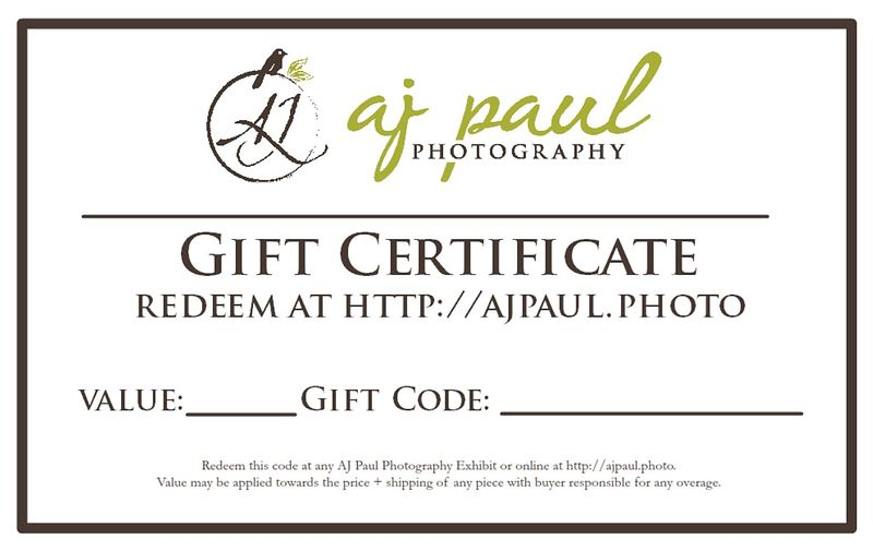 Gift Certificates are issued as codes that can be redeemed online or at any AJ Paul Photography exhibit toward the purchase o...