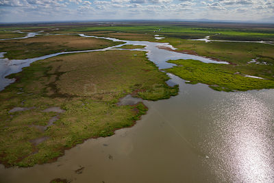 Aerial view of the edge of Lake Urema, Gorongosa National Park, Mozambique.