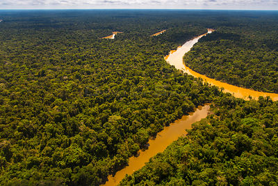 Aerial view of  Yavari-Mirin River and oxbow lake and Amazon Rainforest, Peru, July.