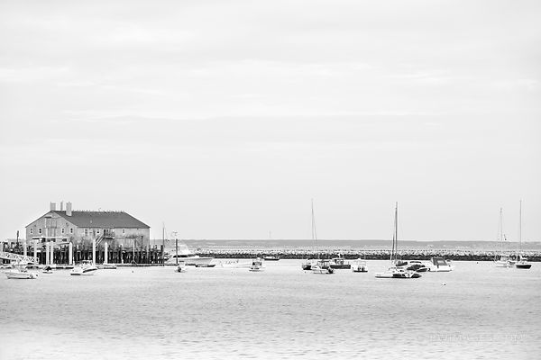 PROVINCETOWN HARBOR CAPE COD MASSACHUSETTS BLACK AND WHITE