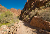 Path To Phantom Ranch- Grand Canyon