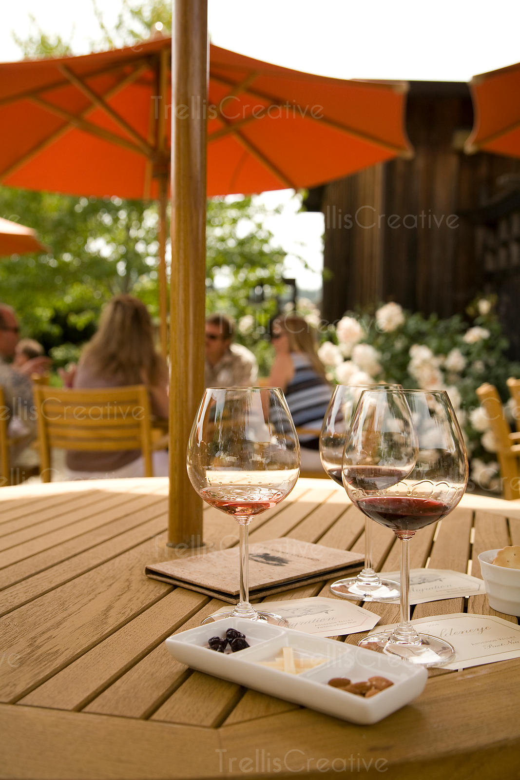 Outdoor wine and food pairing
