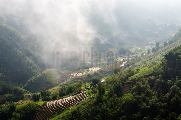 Rice Terraces in the Sapa Valley