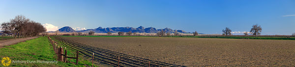 Sutter Buttes and Fields Panorama #1
