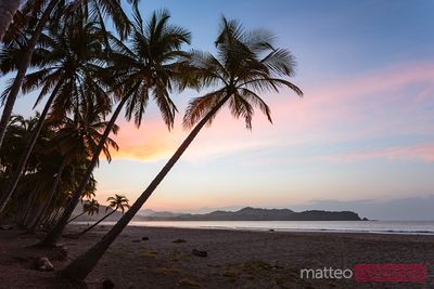 Sunrise over exotic sandy beach with palm trees, Costa Rica