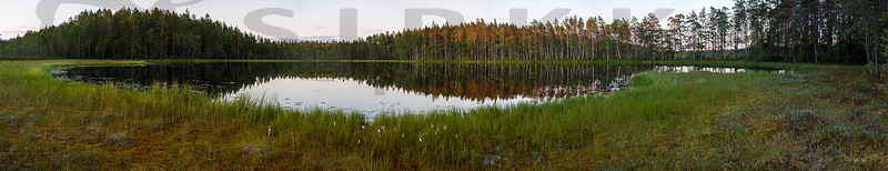 Salamaperä Strict Nature Reserve