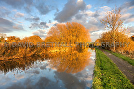 Autumn Reflections On The Chester Canal