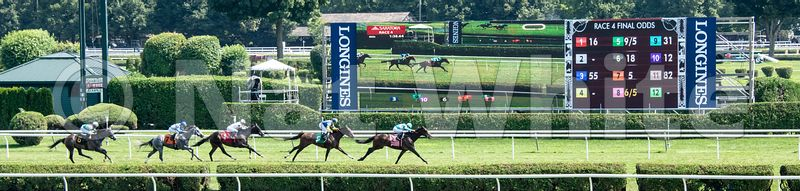 Saratoga_racetrack-Turf_Finish-5922_1August_06_2018_