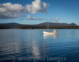Fishing boat on Carnarvon Bay, Port Arthur, Tasmania, Australia; Portrait