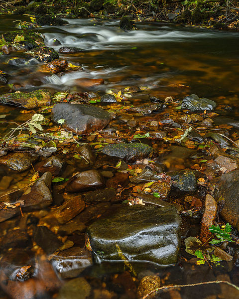 Wet rocks and flowing water along with Autumn colours in the River Bovey, Dartmoor National Park, Bovey Tracey, Devon, UK