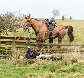 Jo Rutter falling over a fence on Flitteris Park. The Cottesmore Hunt at Cransley Cottage 12/2