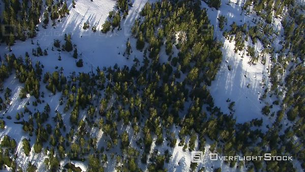 Aerial Footage of Snow Covered Forest, Alaskan Wilderness
