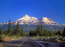 Mt. Shasta, Late Afternoon
